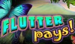 FlutterPays slot