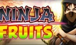NinjaFruits slot