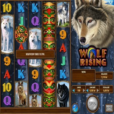 Five Reel Bingo™ Slot Machine Game to Play Free in Rivals Online Casinos